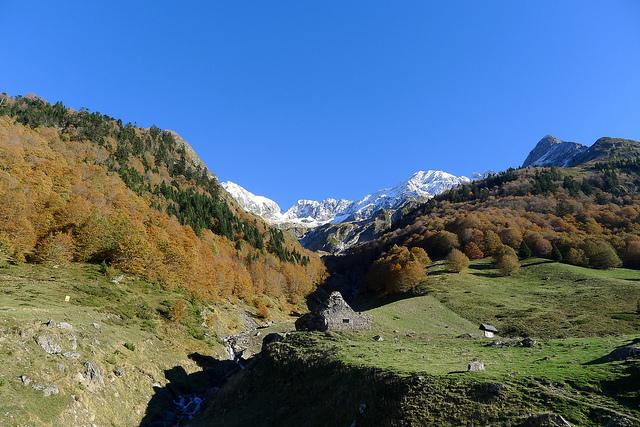 pyrenees12