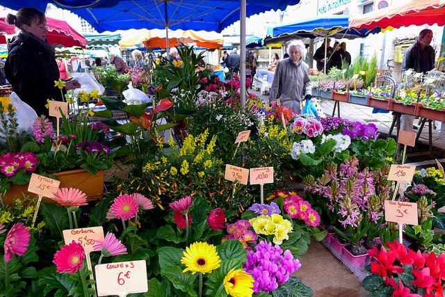 market_feb11